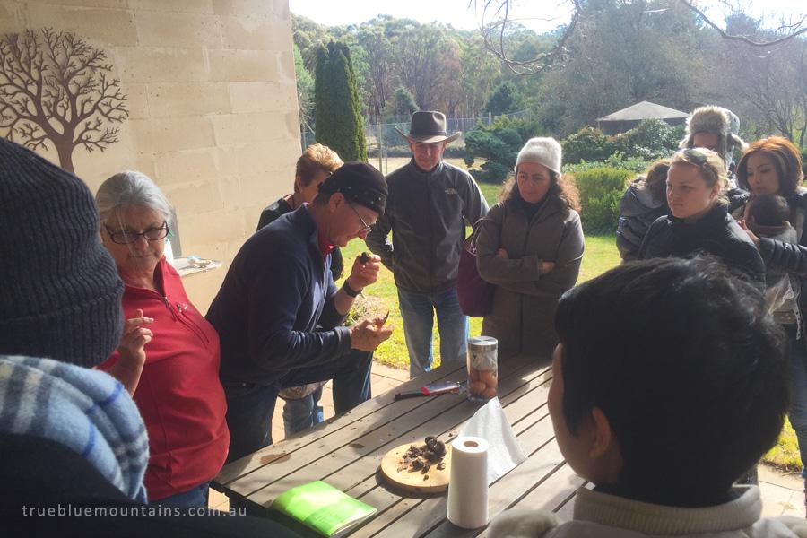 Lowes-Mount-Truffiere_grading